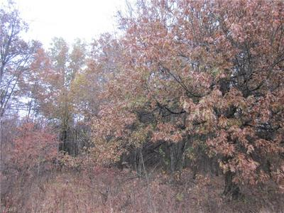 LOT 17 CORBETT, Diamond, OH 44412 - Photo 2