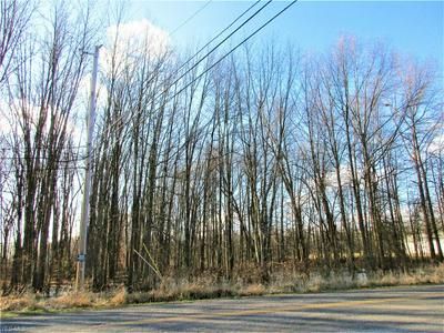 NELSON MOSIER ROAD, LEAVITTSBURG, OH 44430 - Photo 1