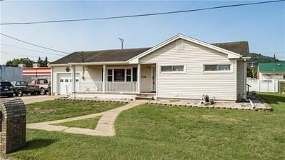 316 ALBERT ST, New Martinsville, WV 26155 - Photo 2