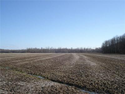 VL STUMPVILLE ROAD, JEFFERSON, OH 44047 - Photo 1