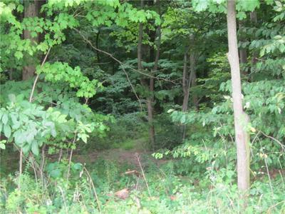 V/L UNGER ROAD # TRACT B, Atwater, OH 44201 - Photo 1
