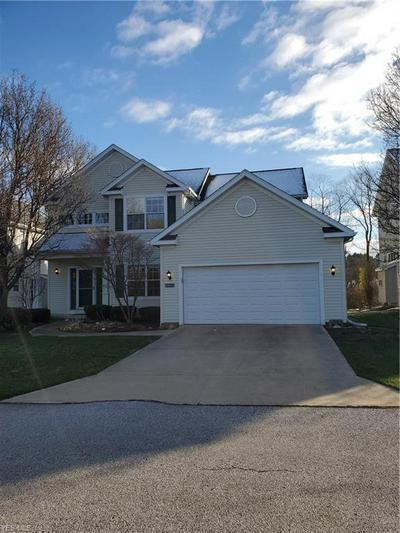 10311 WILDFLOWER WAY, Broadview Heights, OH 44147 - Photo 1