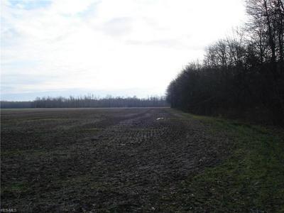 VL STUMPVILLE ROAD, JEFFERSON, OH 44047 - Photo 2