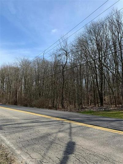 SHIELDS ROAD, CANFIELD, OH 44406 - Photo 1