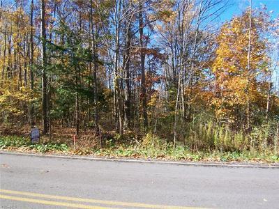 6770 DEWEY RD, Thompson, OH 44086 - Photo 1