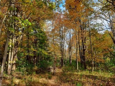 CEDAR RD, Chesterland, OH 44026 - Photo 1