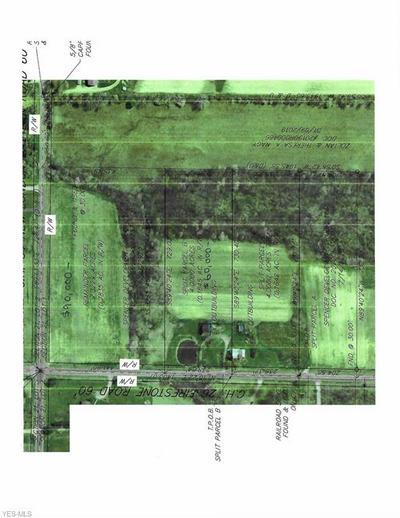 FIRESTONE RD, Spencer, OH 44275 - Photo 1