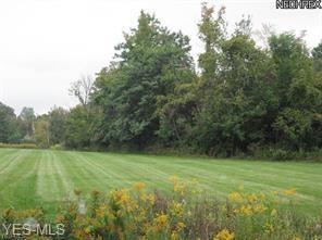 V/L BOSTON ROAD, North Royalton, OH 44133 - Photo 1