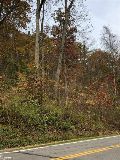 YOUNGSTOWN LOWELLVILLE RD, Lowellville, OH 44436 - Photo 1