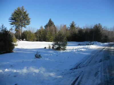 21 RIVER VIEW RD # 21, Newport, NH 03773 - Photo 2