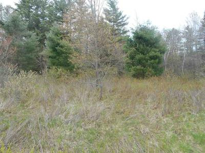 33G ISRAELS RIVER RD, Jefferson, NH 03583 - Photo 2