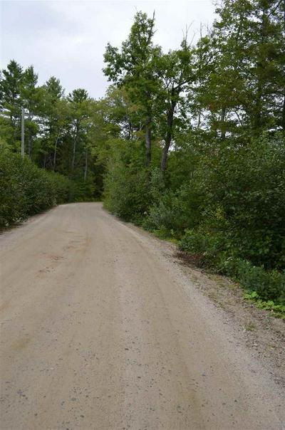 0 SWAMP ROAD, Greenfield, NH 03047 - Photo 2