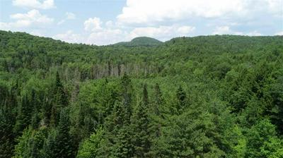 0 STEVENS ROAD, West Fairlee, VT 05083 - Photo 2