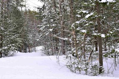 LOT 289 VALLEY ROAD, Haverhill, NH 03785 - Photo 2
