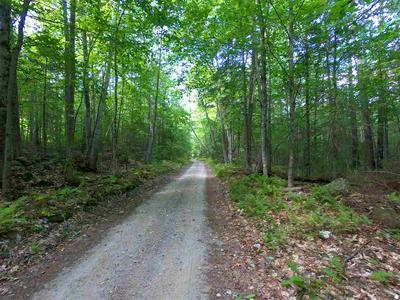 LOT 5 OFF BEACH HILL ROAD # 5, Warren, NH 03279 - Photo 2