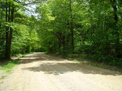 WEST HILL DRIVE, Readsboro, VT 05350 - Photo 2