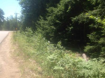5 HODGSON ROAD, Ossipee, NH 03814 - Photo 1
