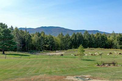 337 PLOT RD, Johnson, VT 05656 - Photo 2