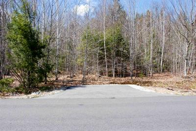 102 GRANDVIEW RD, Conway, NH 03818 - Photo 2