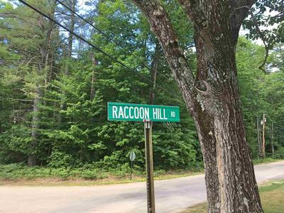 LOT 4 RACCOON HILL ROAD, Andover, NH 03216 - Photo 2