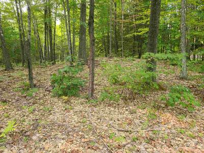 00 POND BROOK ROAD, Chesterfield, NH 03466 - Photo 1