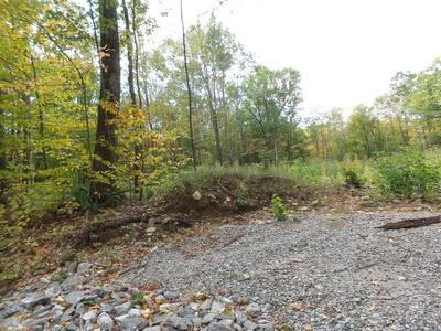 182 BEAN HILL RD, Belmont, NH 03220 - Photo 2