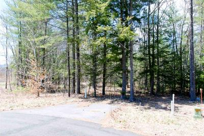 79 MADELINE WAY, Conway, NH 03818 - Photo 1
