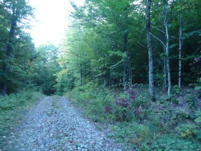 0 HAMPSHIRE WOODS LOOP # 27, Errol, NH 03579 - Photo 1