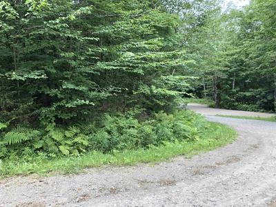 00 PAIGE HILL ROAD, Waterville, VT 05492 - Photo 2