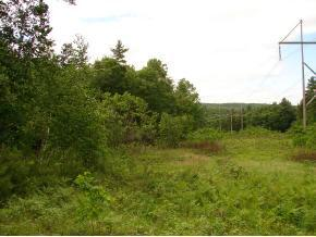 297 ROUTE 10 ROUTE, Winchester, NH 03470 - Photo 2