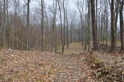 WEST HILL ROAD, Troy, NH 03465 - Photo 2
