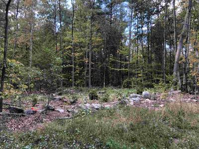 LOT 84-1 EAST DERRY ROAD, Chester, NH 03036 - Photo 1