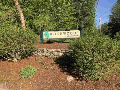 3 BEECHWOODS DRIVE # 3, Bartlett, NH 03845 - Photo 2
