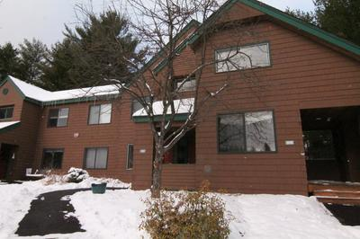 148 DEER PARK DRIVE # 98, Woodstock, NH 03262 - Photo 1