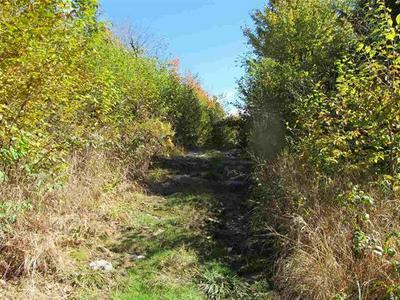 - DANFORTH ROAD, Pittsburg, NH 03592 - Photo 2
