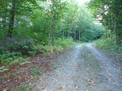 0 HAMPSHIRE WOODS LOOP # 27, Errol, NH 03579 - Photo 2