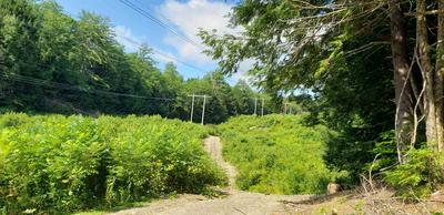 0 JACKSON LOT ROAD, Winchester, NH 03470 - Photo 1