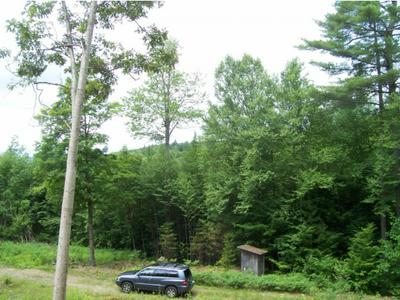00 TOWN HOUSE ROAD, Cornish, NH 03745 - Photo 1