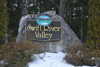 3 SWIFT VALLEY RD, Conway, NH 03818 - Photo 2