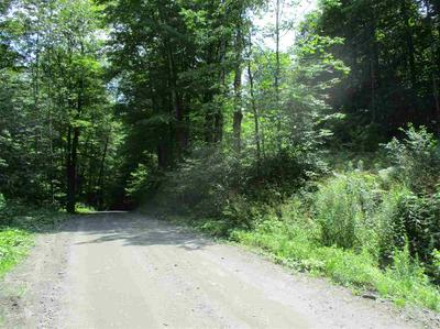 0 TWIN PONDS ROAD, Brookfield, VT 05036 - Photo 2