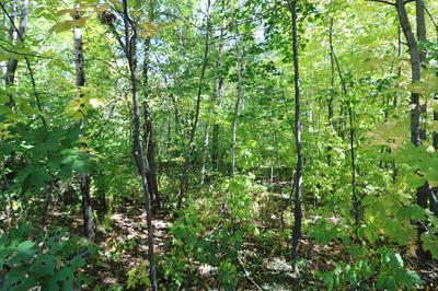 743 WESTERN AND FIRST AVENUE # MAP 118 LOTS 71, Berlin, NH 03570 - Photo 1