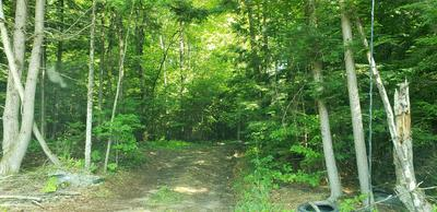 0 JACKSON LOT ROAD, Winchester, NH 03470 - Photo 2