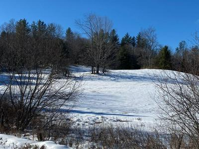 00 WINHALL HOLLOW ROAD, WINHALL, VT 05340 - Photo 1