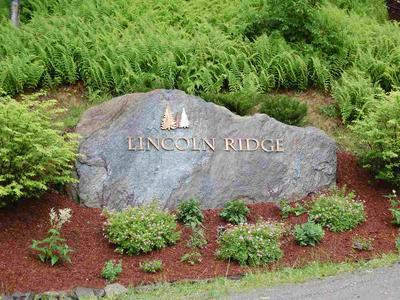 16 LINCOLN RIDGE ROAD, Warren, VT 05674 - Photo 1