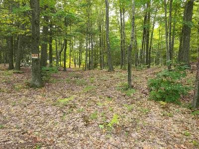 00 POND BROOK ROAD, Chesterfield, NH 03466 - Photo 2