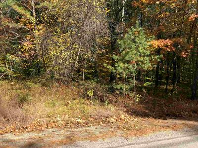 0 PINE RIVER ROAD, Effingham, NH 03882 - Photo 1