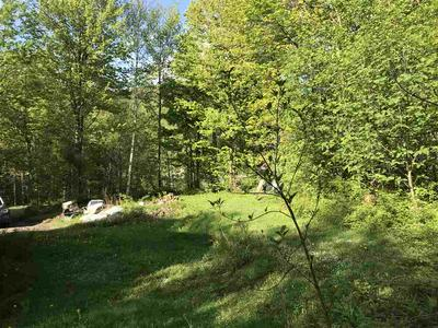 1008 CODDING HOLLOW RD, Waterville, VT 05492 - Photo 2