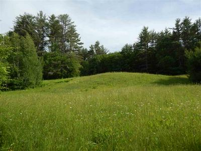 LOT 3 114 ROUTE, Warner, NH 03278 - Photo 1
