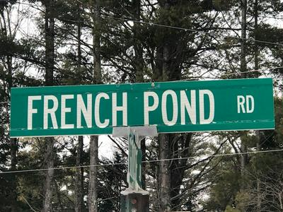 FRENCH POND ROAD, Haverhill, NH 03785 - Photo 2