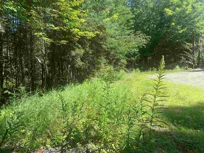 15 HAMPSHIRE WOODS LOOP # 15, Errol, NH 03579 - Photo 1
